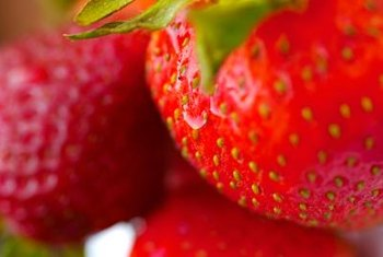 Strawberries are both delicious and healthy, containing antioxidant that help fight off diseases.