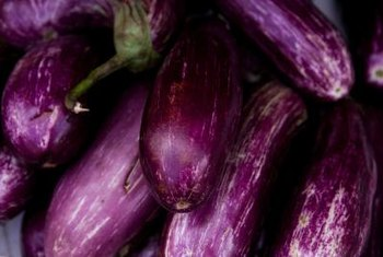 Eggplants are nightshade plants.