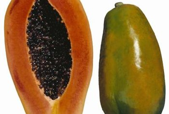 Papaya is native to southern Mexico.