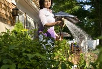 Using a hose-end sprayer makes spraying as easy as watering; but don't forget the protective clothing.
