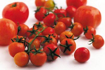 """Early Girl"" tomatoes are a small to mid-size early-season tomato variety."