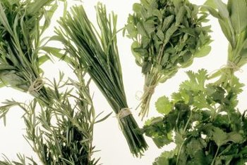 The strong oils in herbs keep many garden pests from eating the plants.