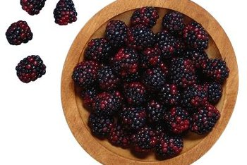 With its clusters of drupelets, the boysenberry resembles the blackberry and raspberry.