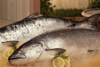 Salmon is one of the best sources of DHA.