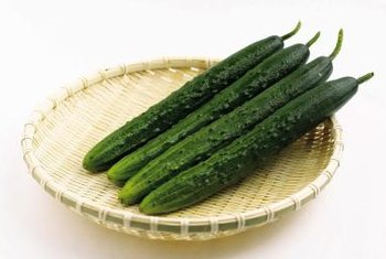 Most cucumbers require sturdy support to produce a bountiful harvest.