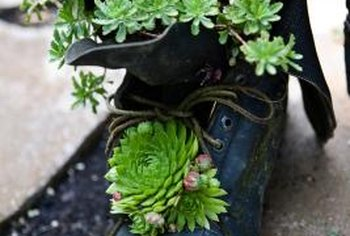 You can make garden art from almost anything.
