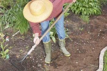 Raking the area smooths the soil and unearths rocks or debris before laying the fabric.