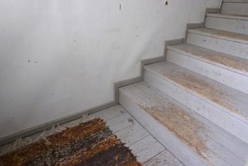 Carpeting would have protected these stair treads.