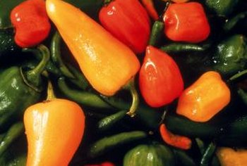 Yellow pepper varieties can be sweet to hot.