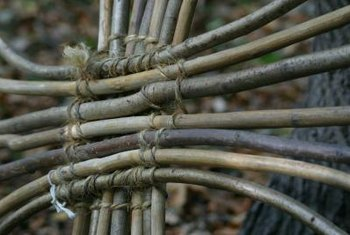 Willow twigs are easy to weave and bend for making a crude garden fence.