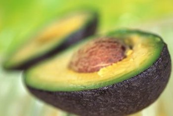 A healthy avocado tree may only produce 100 to 200 mature fruit.