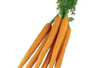Carrots are healthy, delicious and make excellent wireworm bait.