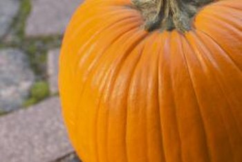 Pumpkins are self-propagating vegetables.