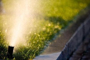 Sprinklers spread water everywhere, even in areas where nothing grows.