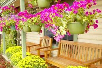 Flowering shrubs and plants get your home noticed.