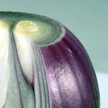 Purple onions are full of fiber and naturally low in calories.