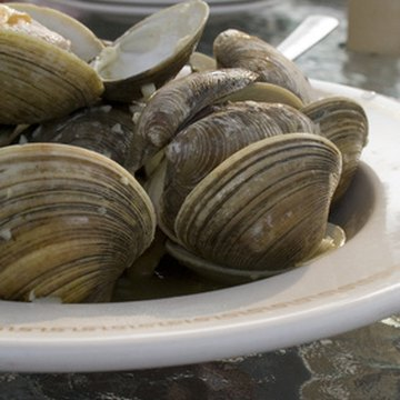 Clams are one of the richest B12 foods.