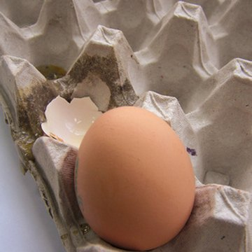Egg allergies are one of the more common types of food allergies.