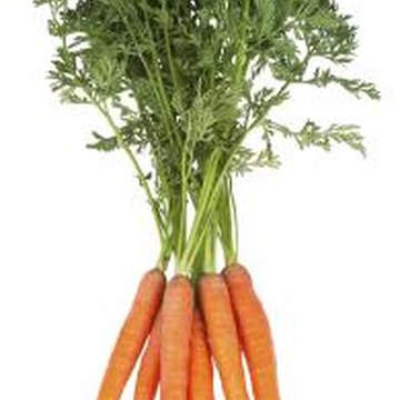 Carrots are just one of the root crops you can grow hydroponically.