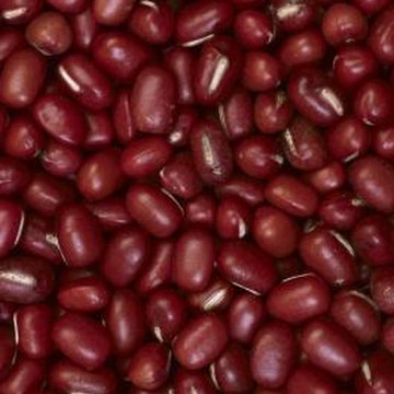 Dried adzuki beans have a sweet flavor and attractive red color with a white ridge on top.