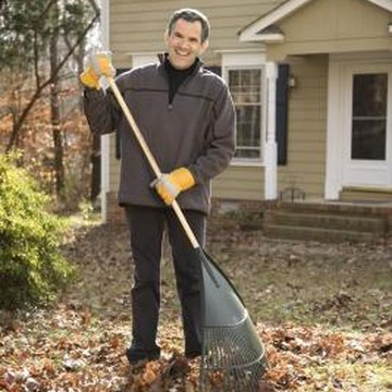 how to get rid of dead grass in lawn