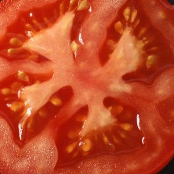 The gel-like pulp surrounding tomato seeds requires removal when saving seeds.