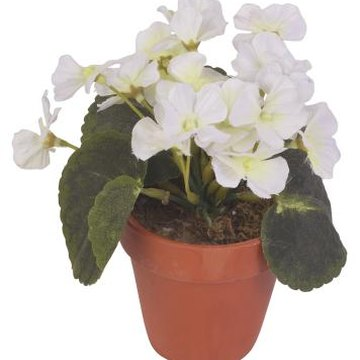 Some artificial plants are treated with a UV resistant product by the manufacturer.