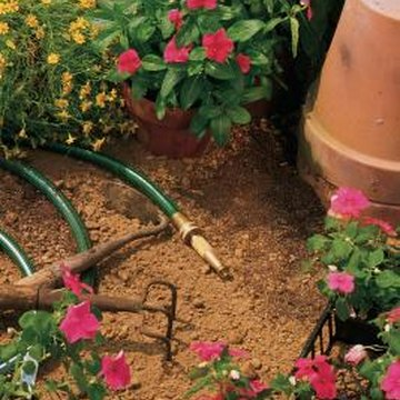 Hose-end sprayers allow you to cover larger areas with insecticidal soap.