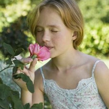 Bugs on your rosebushes can compromise your enjoyment of their fragrant blossoms.