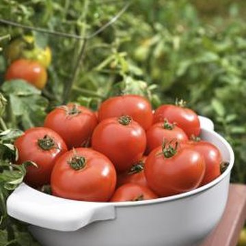 Sub-irrigated planters are useful for growing thirsty crops like tomatoes.