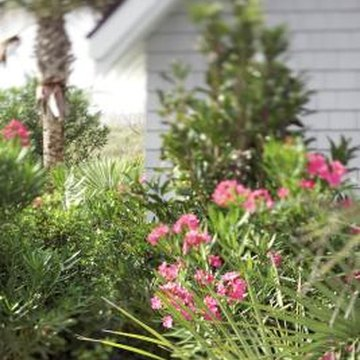 Landscaping can make your small, square house seem gracious and hospitable.