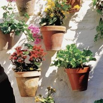 Small pots can make a big, dramatic impact.
