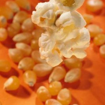 The starchy endosperm inside popcorn kernels pop when they're heated.