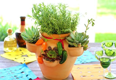 How to Plant an Herb and Succulent Garden in a Strawberry Pot