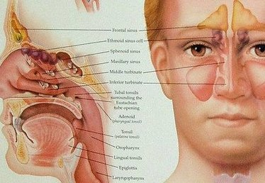 Sinus Infection & Eye Pain