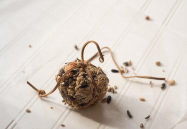 These Birdseed Balls Will Bring All the Birds to Your Yard