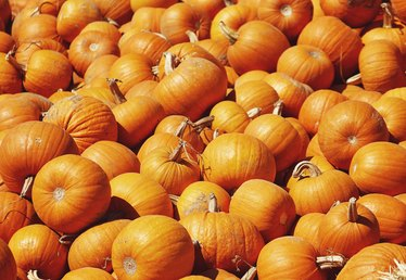 How to Wash Pumpkins With Bleach