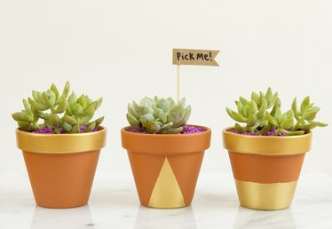 How to Make Mini-Planter Party Favors