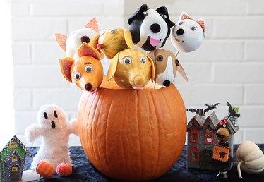 DIY Halloween Pupkin