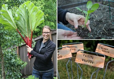 19 Tips to Get a Vegetable Garden Growing