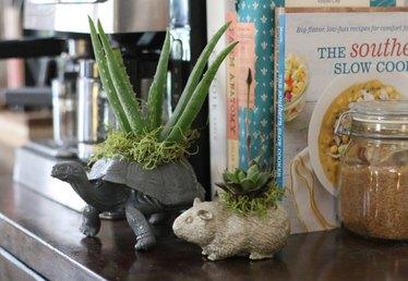 DIY Plastic Animal Planters