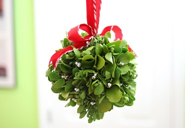 How to Make a Mistletoe Kissing Ball