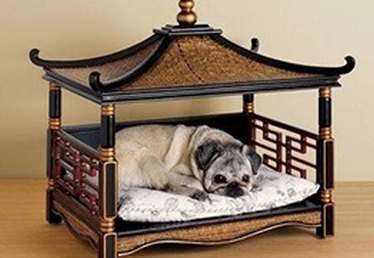 7 Most Ridiculous (But Totally Awesome) Beds for Your Pet