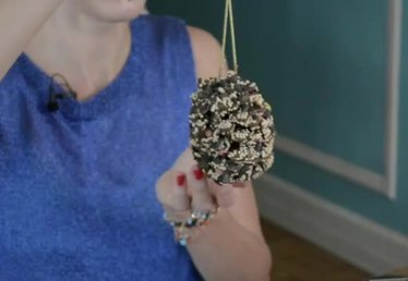 How to Make Birdseed Pinecones