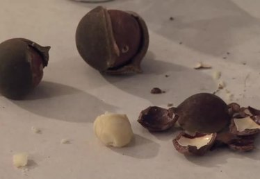 How to Crack Macadamia Nuts