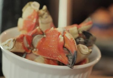How to Steam Fresh Stone Crabs