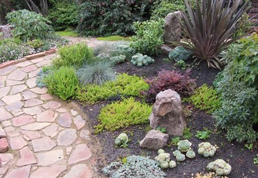 Landscaping a Rain-Friendly Garden