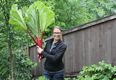 All the Hipsters are Doing It: Planting Perennial Fruits and Vegetables