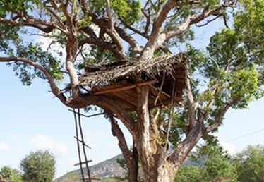 How to Build Tree House Bracing