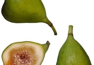 How to Care for a Kadota Fig Tree